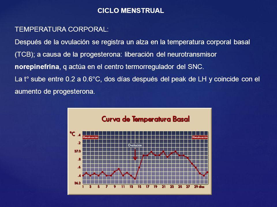CICLO MENSTRUAL TEMPERATURA CORPORAL: