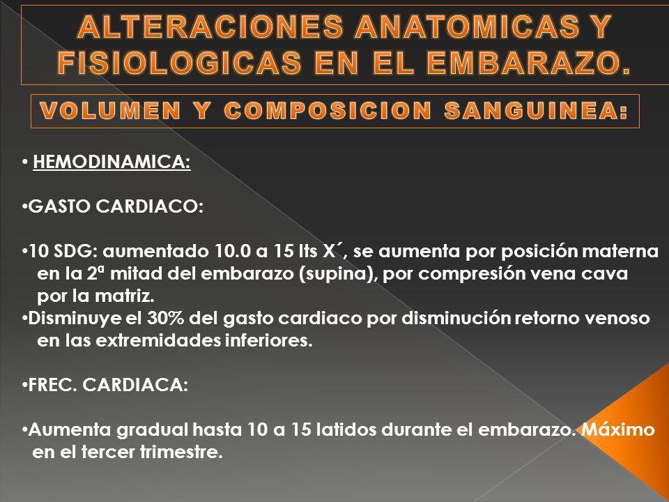 Magnífico Anatomía Y Fisiología Del Embarazo Fotos - Imágenes de ...