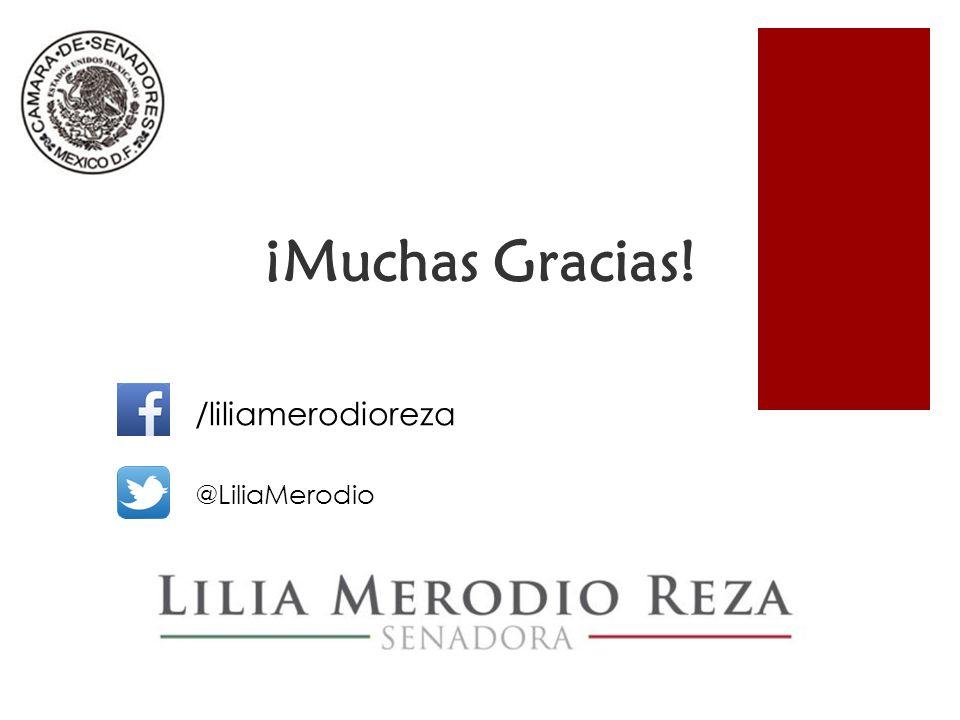 ¡Muchas Gracias! /liliamerodioreza @LiliaMerodio