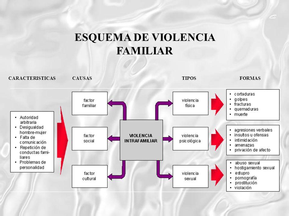 ESQUEMA DE VIOLENCIA FAMILIAR