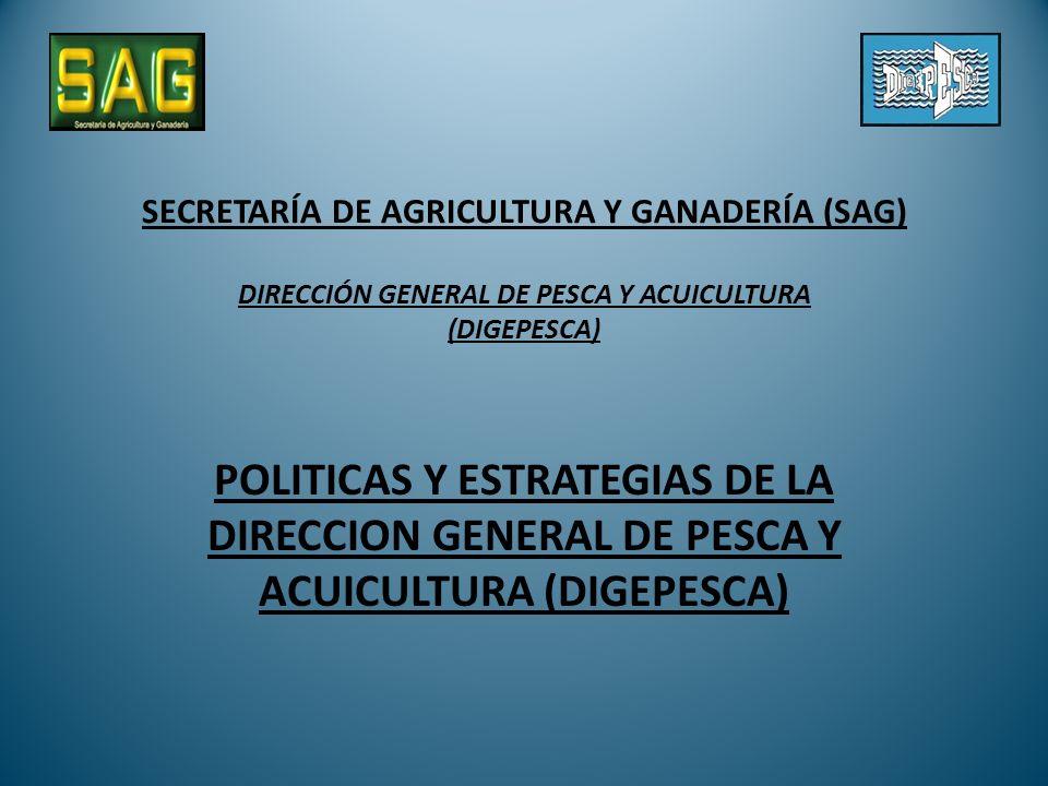 SECRETARÍA DE AGRICULTURA Y GANADERÍA (SAG) DIRECCIÓN GENERAL DE PESCA Y ACUICULTURA (DIGEPESCA)