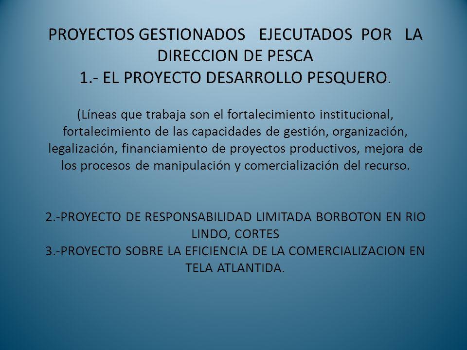 PROYECTOS GESTIONADOS EJECUTADOS POR LA DIRECCION DE PESCA 1