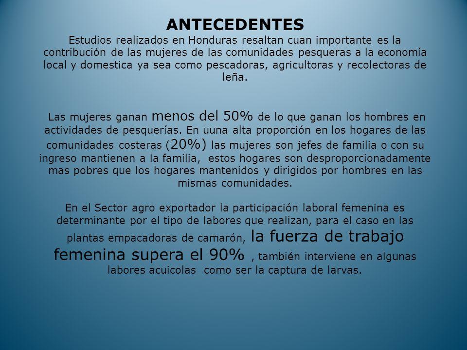 ANTECEDENTES Estudios realizados en Honduras resaltan cuan importante es la contribución de las mujeres de las comunidades pesqueras a la economía local y domestica ya sea como pescadoras, agricultoras y recolectoras de leña.