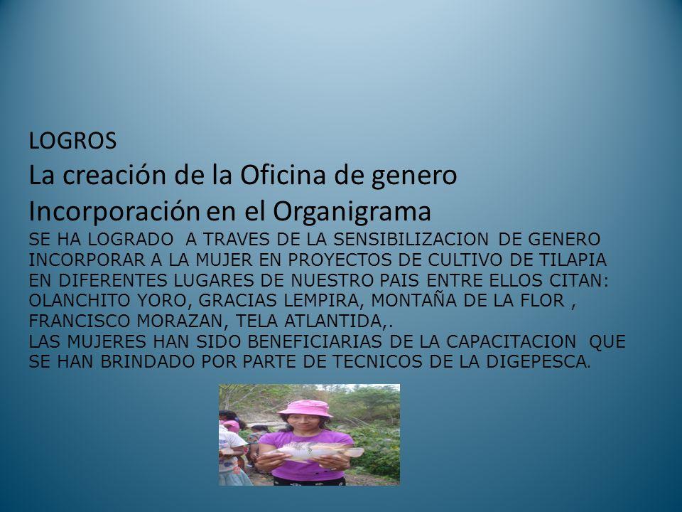 LOGROS La creación de la Oficina de genero Incorporación en el Organigrama SE HA LOGRADO A TRAVES DE LA SENSIBILIZACION DE GENERO INCORPORAR A LA MUJER EN PROYECTOS DE CULTIVO DE TILAPIA EN DIFERENTES LUGARES DE NUESTRO PAIS ENTRE ELLOS CITAN: OLANCHITO YORO, GRACIAS LEMPIRA, MONTAÑA DE LA FLOR , FRANCISCO MORAZAN, TELA ATLANTIDA,.