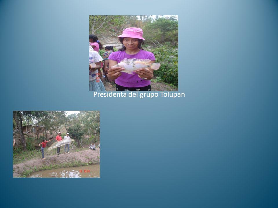 Presidenta del grupo Tolupan