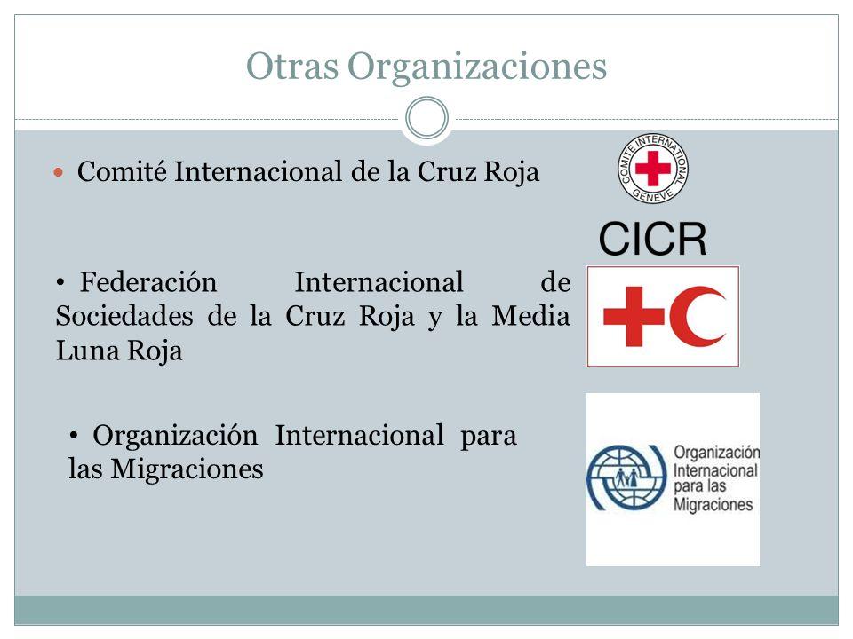 Otras Organizaciones Comité Internacional de la Cruz Roja
