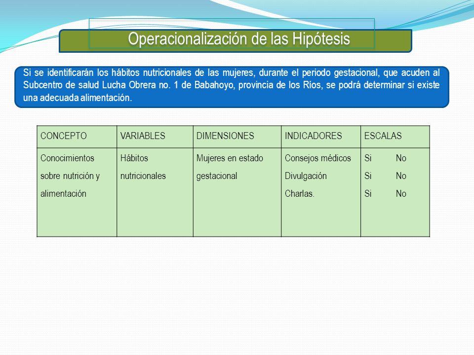 Operacionalización de las Hipótesis