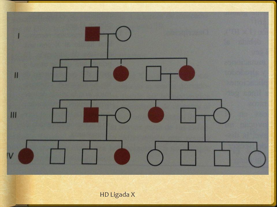HD Ligada X