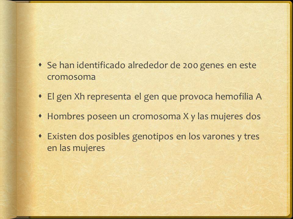 Se han identificado alrededor de 200 genes en este cromosoma