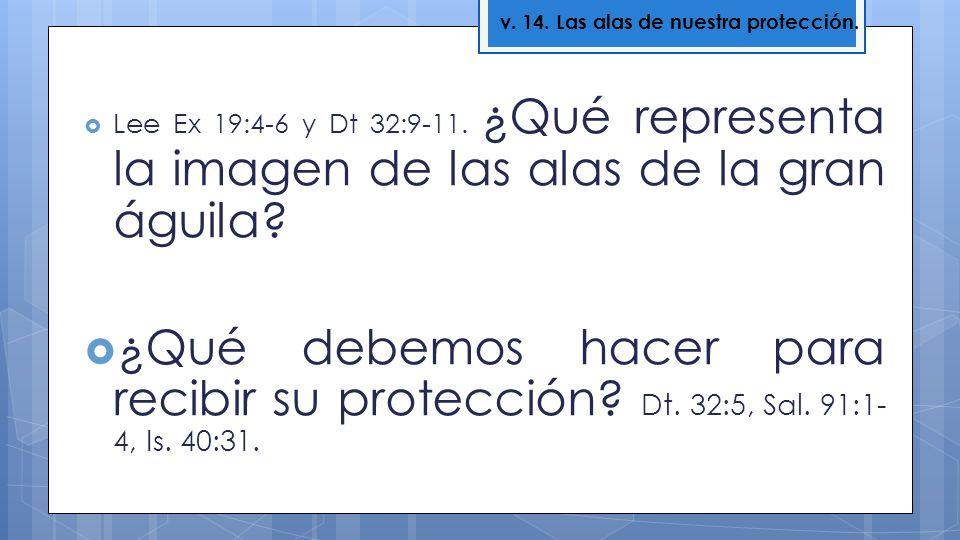 v. 14. Las alas de nuestra protección.