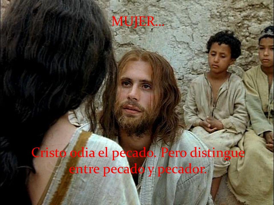 Cristo odia el pecado. Pero distingue entre pecado y pecador.