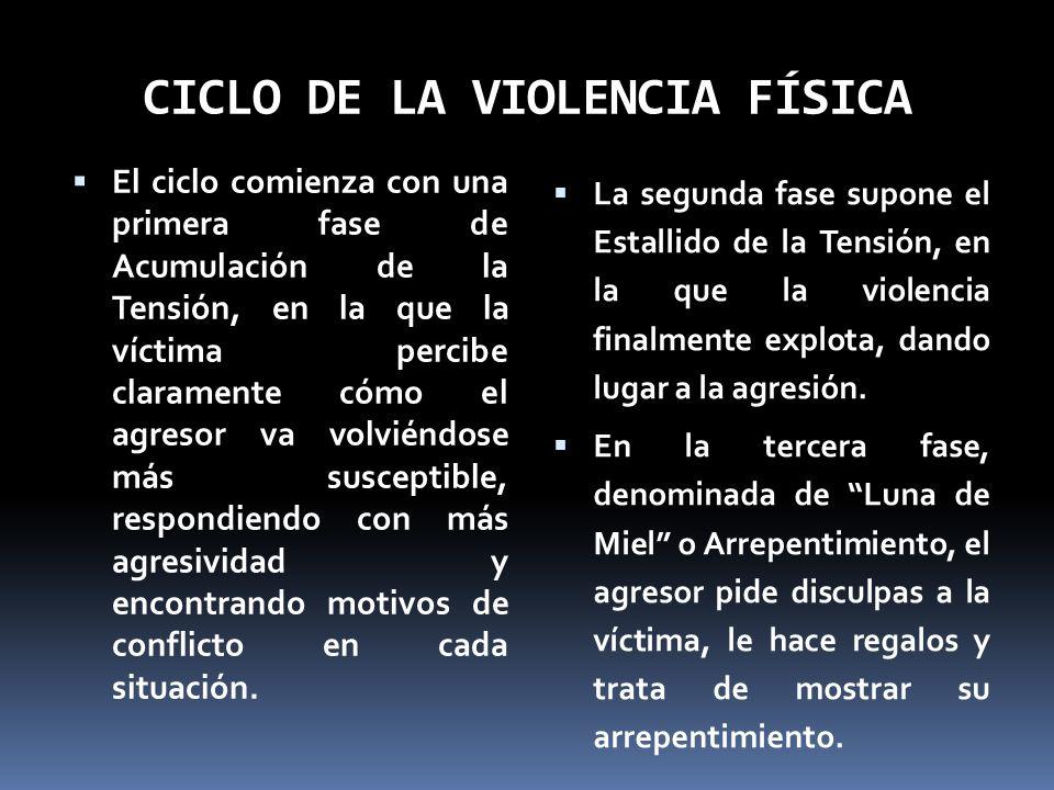 CICLO DE LA VIOLENCIA FÍSICA