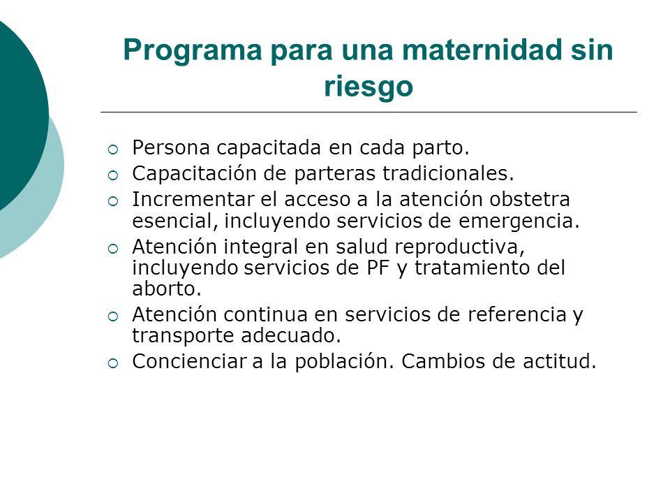Programa para una maternidad sin riesgo
