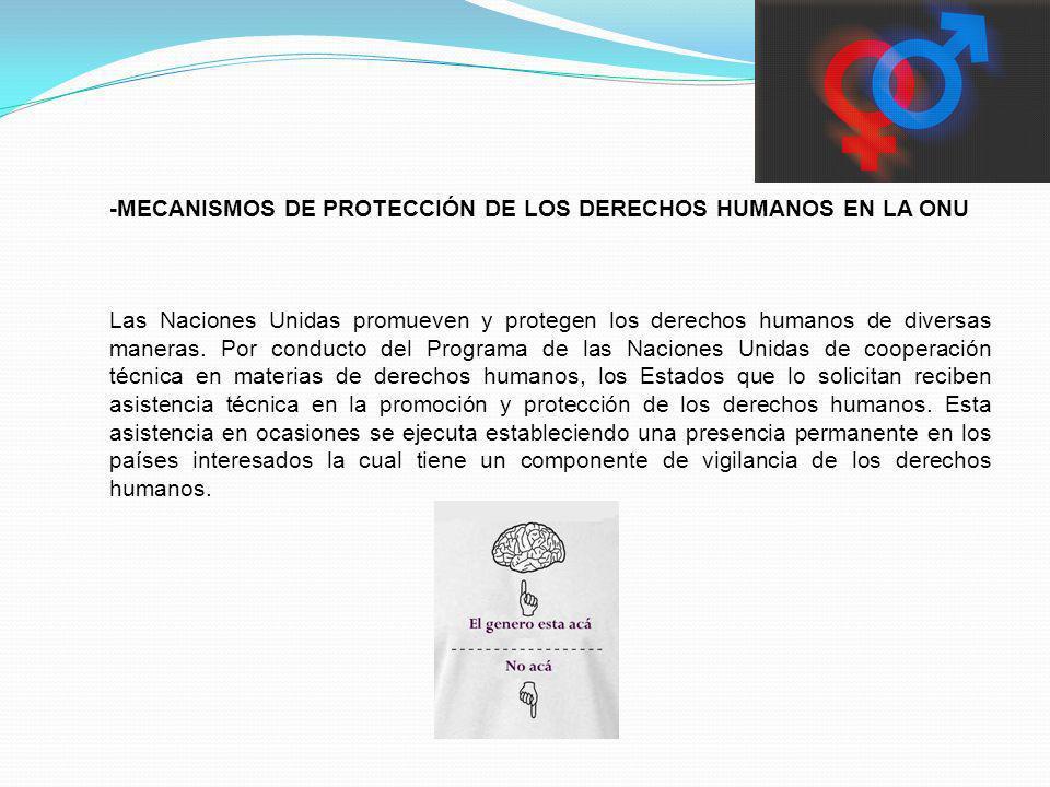 -MECANISMOS DE PROTECCIÓN DE LOS DERECHOS HUMANOS EN LA ONU