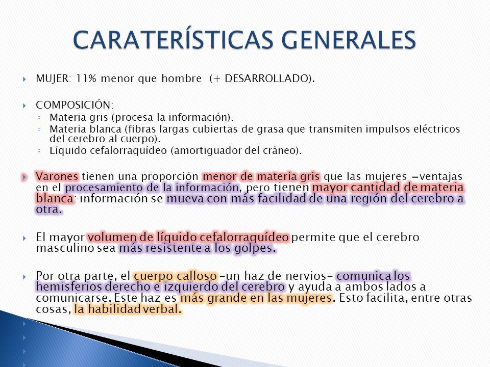 CARATERÍSTICAS GENERALES