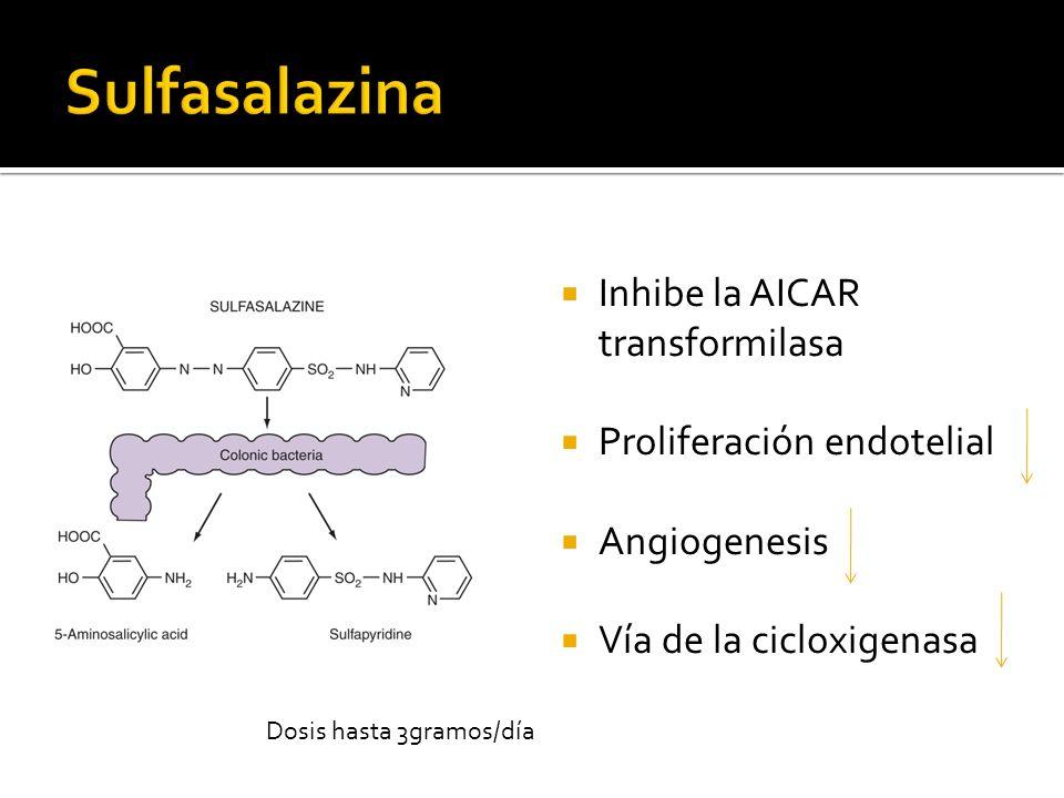 Sulfasalazina Inhibe la AICAR transformilasa Proliferación endotelial