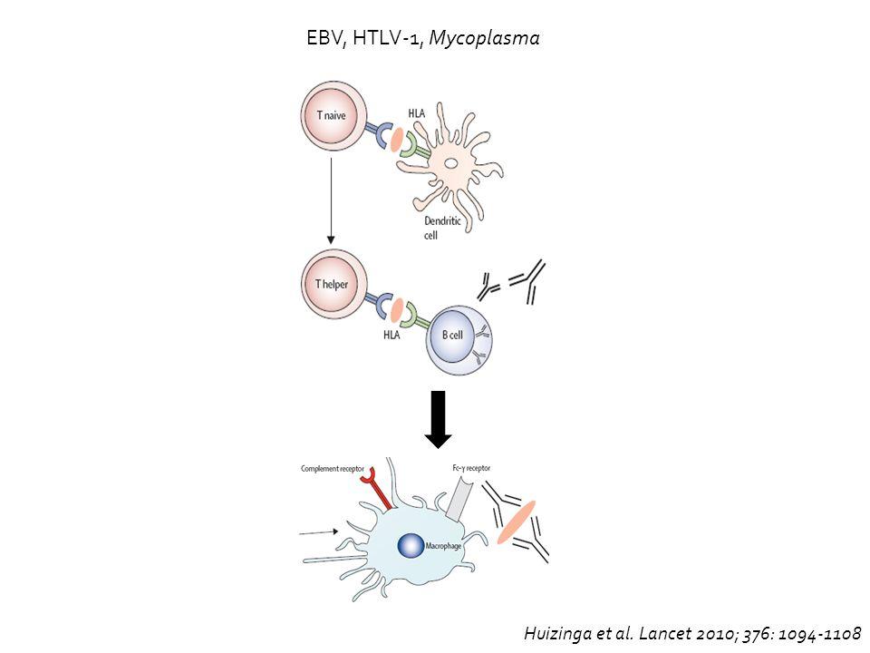 EBV, HTLV-1, Mycoplasma Huizinga et al. Lancet 2010; 376: 1094-1108
