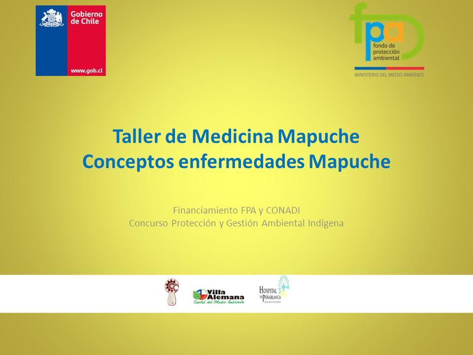 Taller de Medicina Mapuche Conceptos enfermedades Mapuche