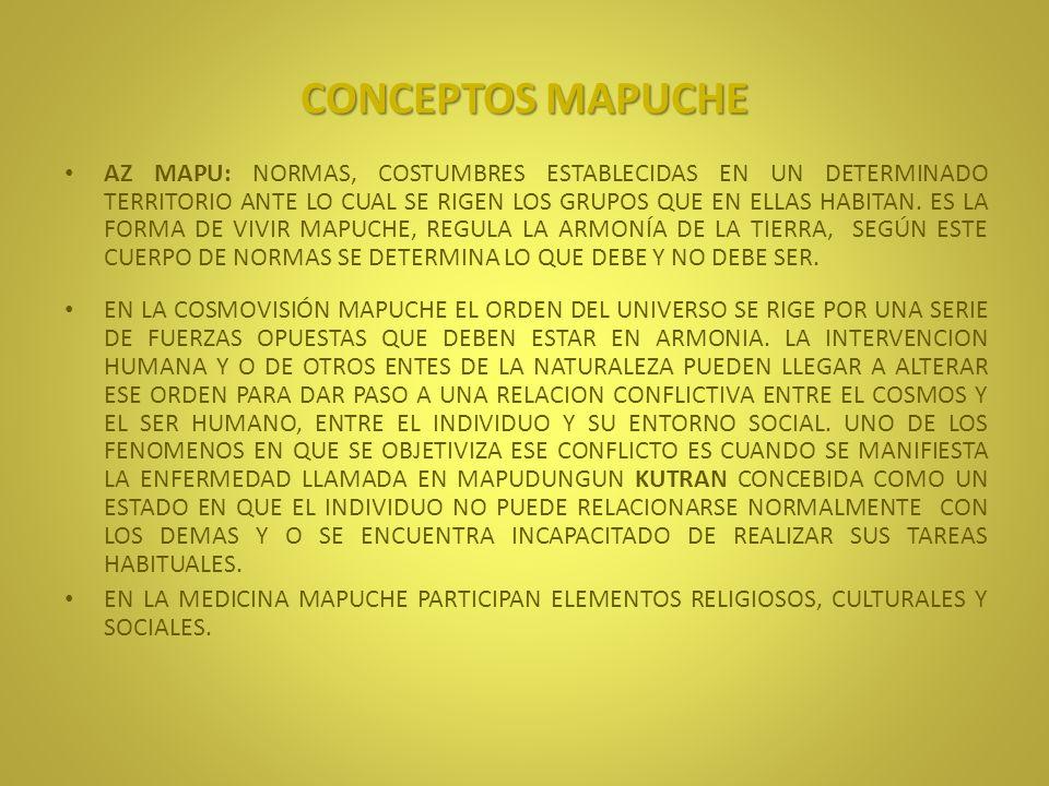 CONCEPTOS MAPUCHE