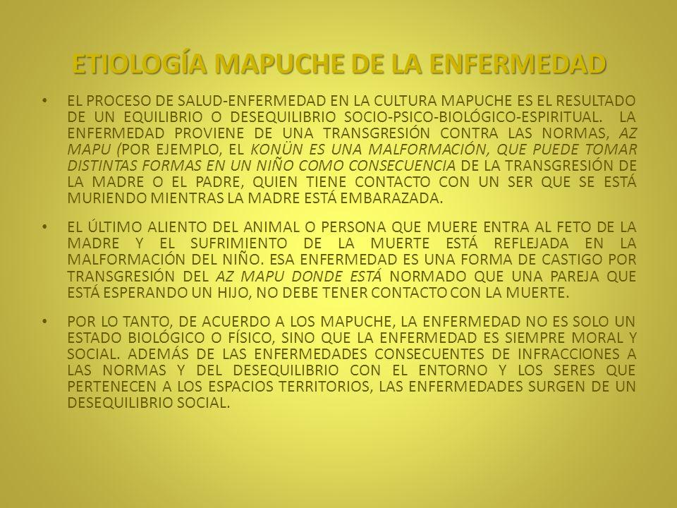 ETIOLOGÍA MAPUCHE DE LA ENFERMEDAD