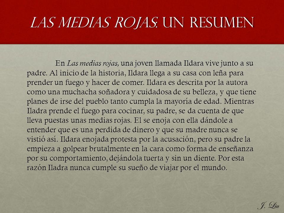 Las Medias Rojas: Un resumen