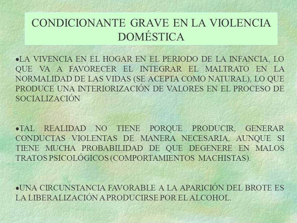 CONDICIONANTE GRAVE EN LA VIOLENCIA DOMÉSTICA