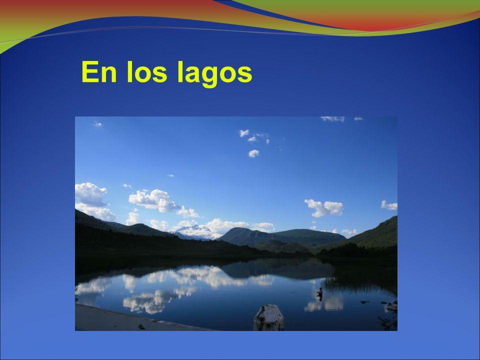 En los lagos 10