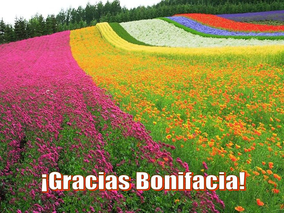 ¡Gracias Bonifacia!