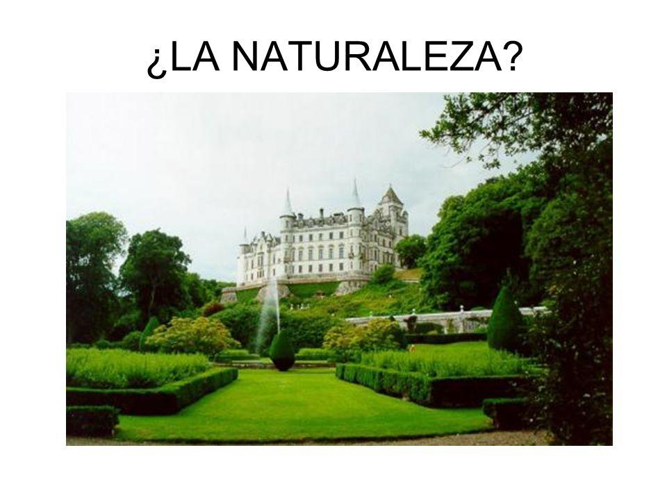 ¿LA NATURALEZA