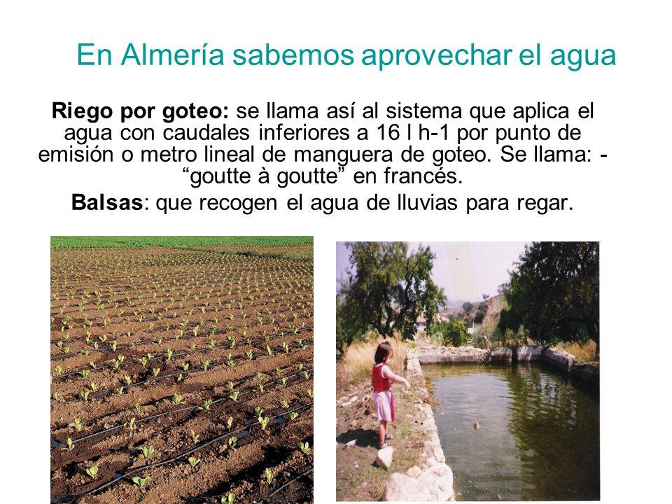En Almería sabemos aprovechar el agua