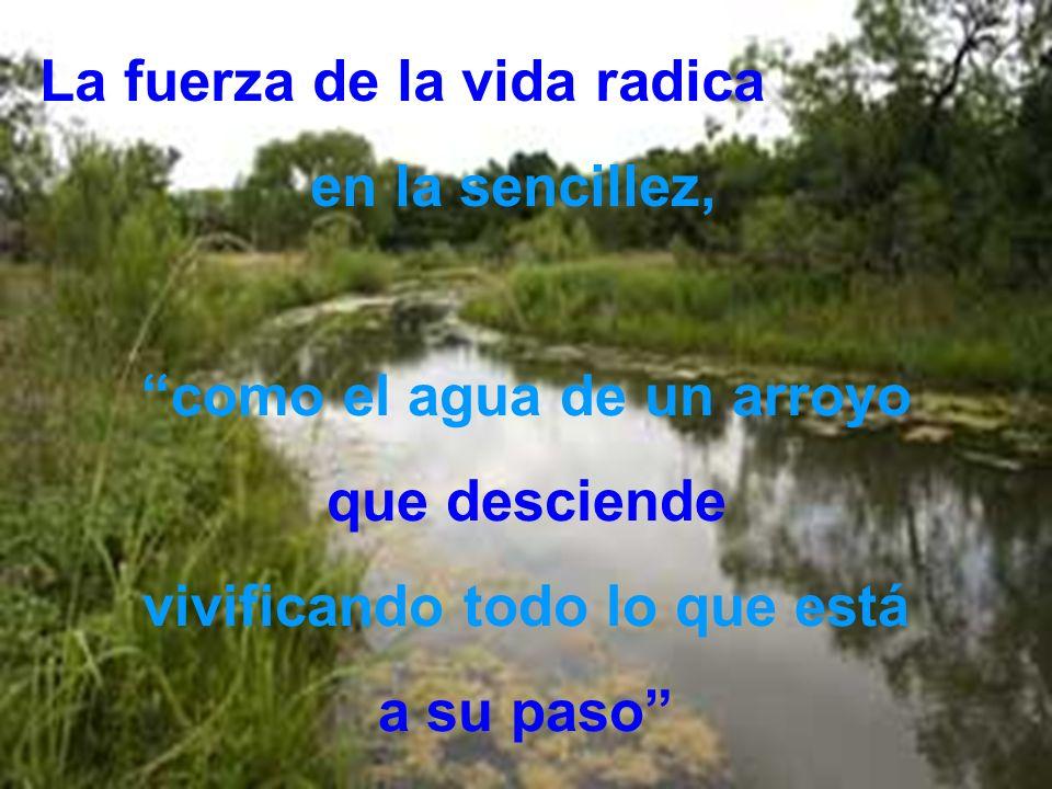 como el agua de un arroyo vivificando todo lo que está