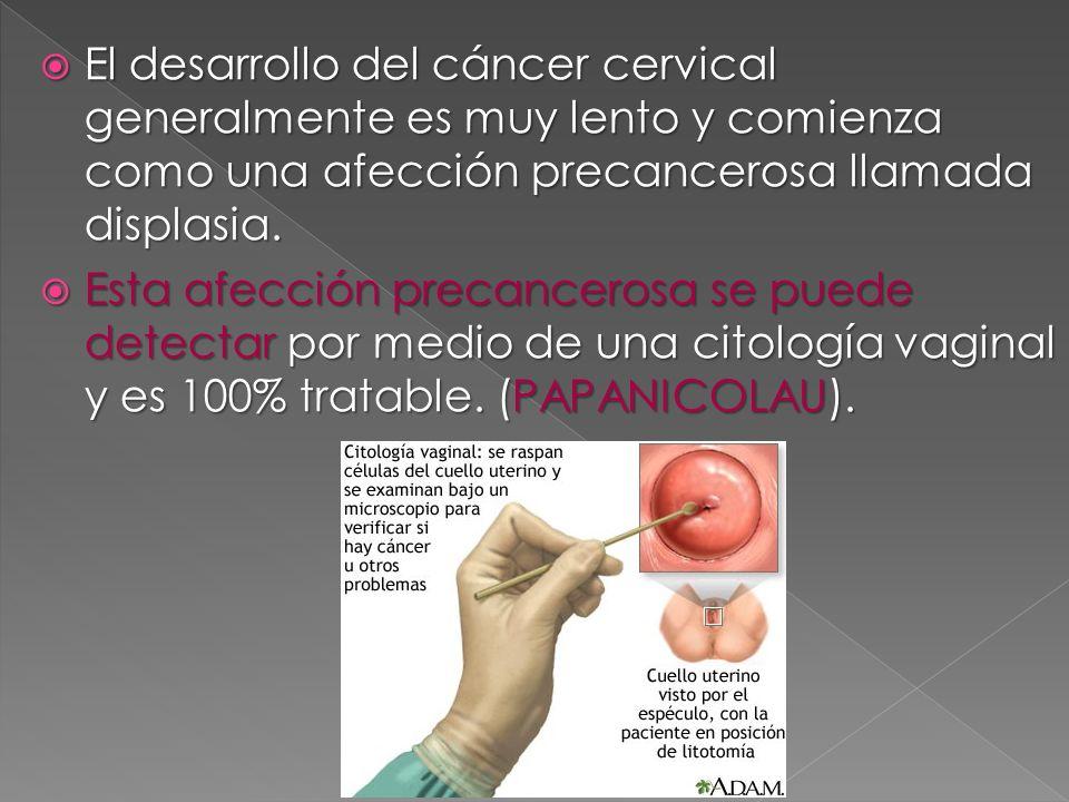 El desarrollo del cáncer cervical generalmente es muy lento y comienza como una afección precancerosa llamada displasia.