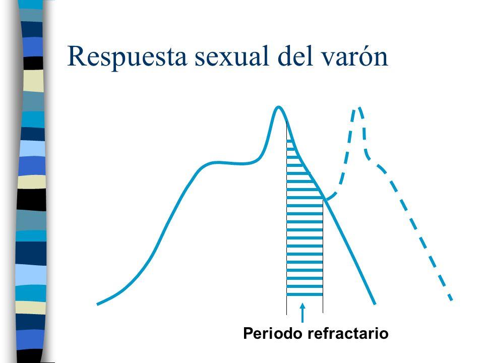 Respuesta sexual del varón