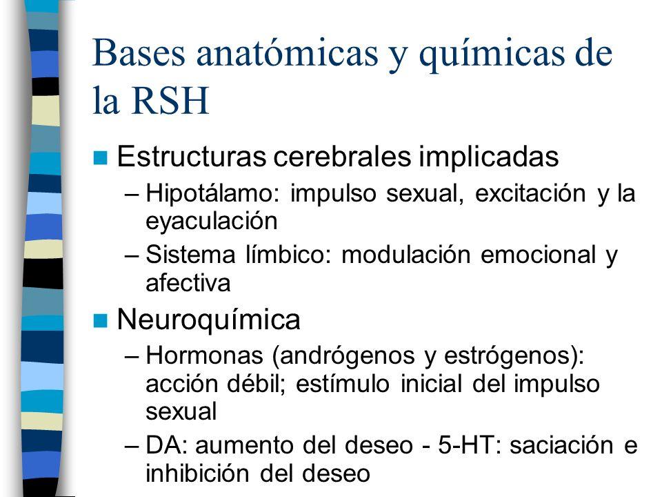 Bases anatómicas y químicas de la RSH