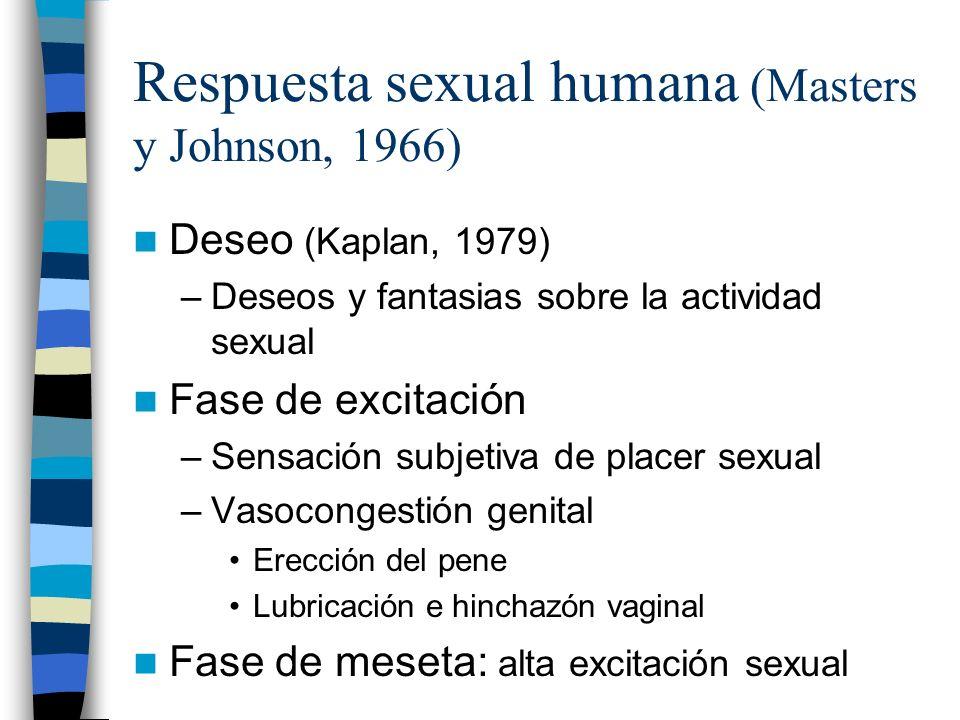 Respuesta sexual humana (Masters y Johnson, 1966)