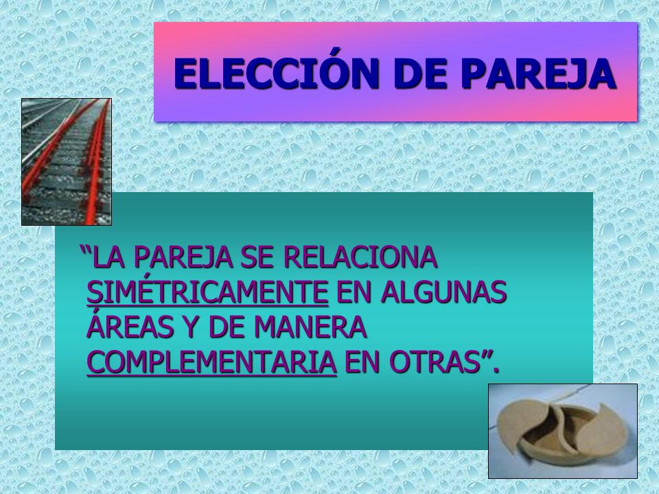 ELECCIÓN DE PAREJA LA PAREJA SE RELACIONA SIMÉTRICAMENTE EN ALGUNAS ÁREAS Y DE MANERA COMPLEMENTARIA EN OTRAS .