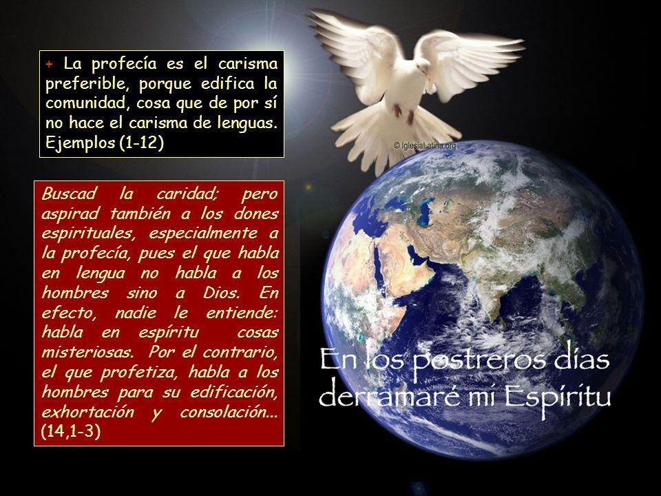 + La profecía es el carisma preferible, porque edifica la comunidad, cosa que de por sí no hace el carisma de lenguas. Ejemplos (1-12)