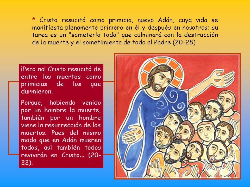 * Cristo resucitó como primicia, nuevo Adán, cuya vida se manifiesta plenamente primero en él y después en nosotros; su tarea es un someterlo todo que culminará con la destrucción de la muerte y el sometimiento de todo al Padre (20-28)
