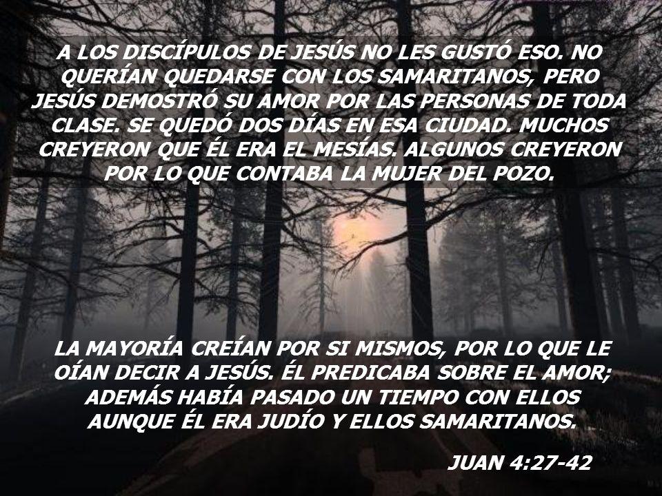 A LOS DISCÍPULOS DE JESÚS NO LES GUSTÓ ESO