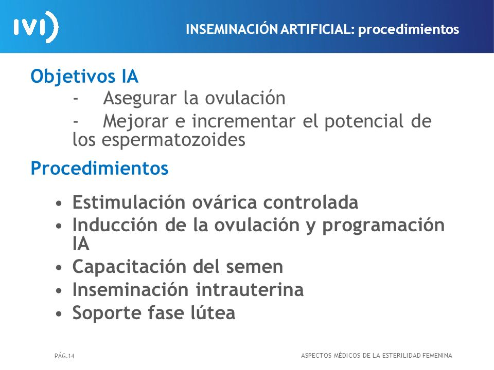 Objetivos IA Procedimientos