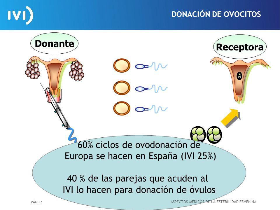 60% ciclos de ovodonación de Europa se hacen en España (IVI 25%)