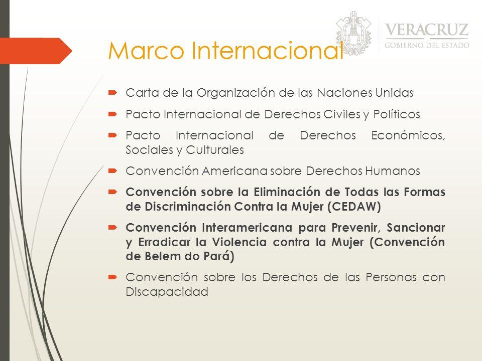 Marco Internacional Carta de la Organización de las Naciones Unidas