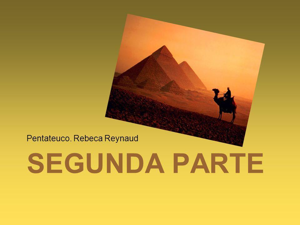 Pentateuco. Rebeca Reynaud