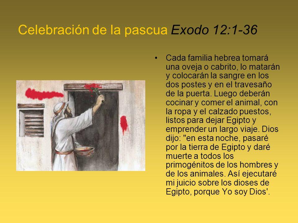 Celebración de la pascua Exodo 12:1-36