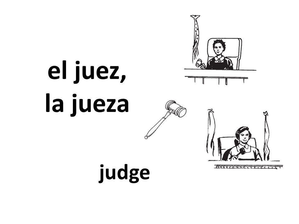 el juez, la jueza judge