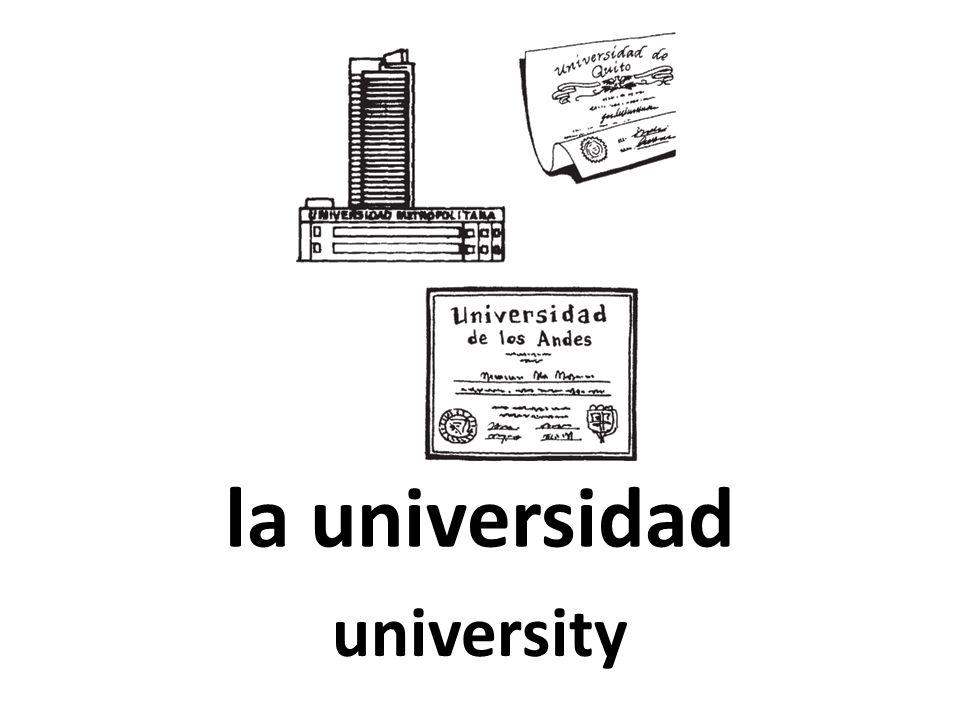 la universidad university