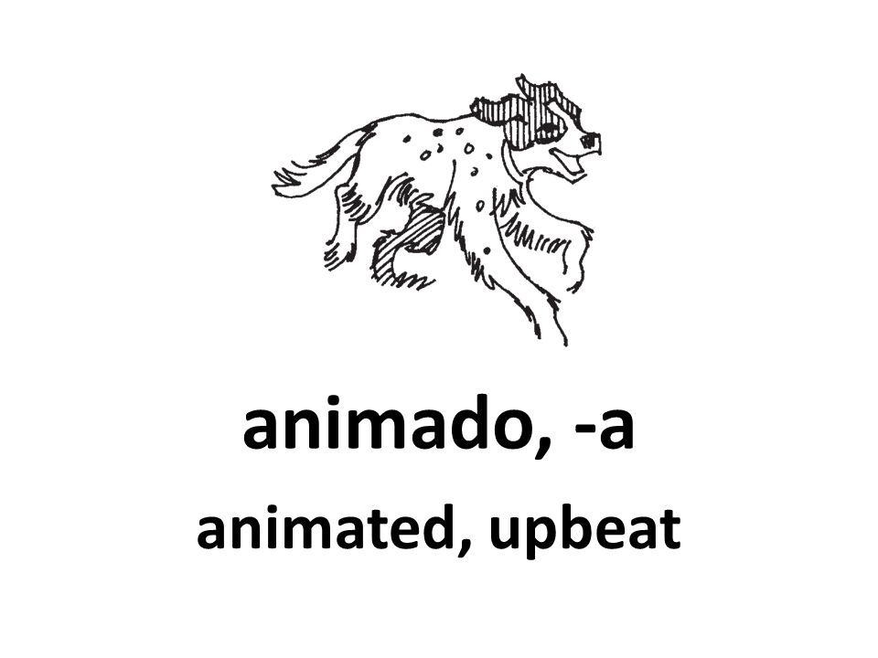 animado, -a animated, upbeat 88