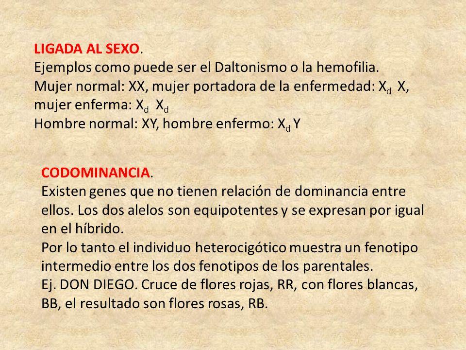 LIGADA AL SEXO. Ejemplos como puede ser el Daltonismo o la hemofilia.