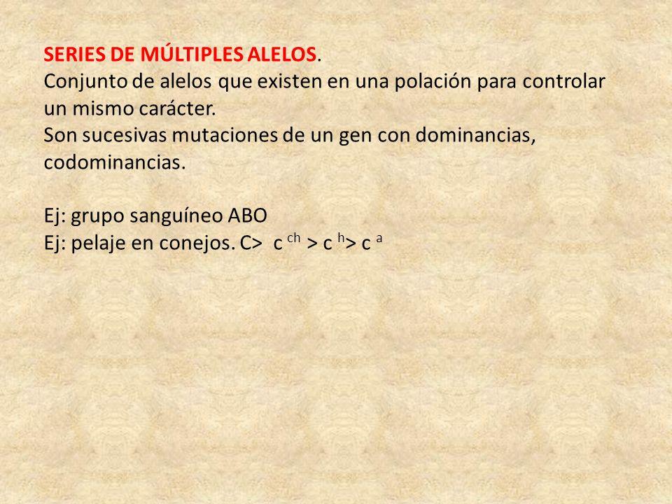 SERIES DE MÚLTIPLES ALELOS.
