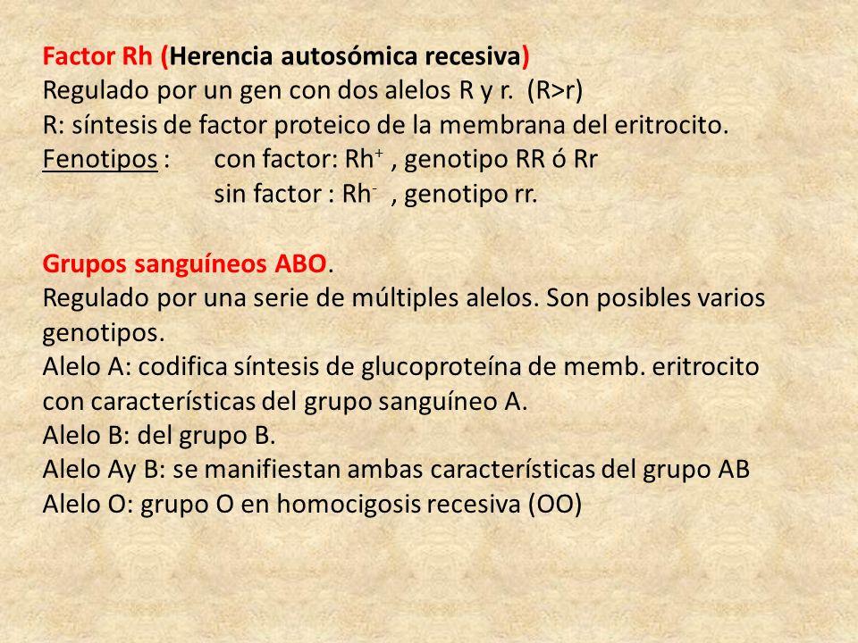 Factor Rh (Herencia autosómica recesiva)